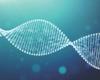 Invloed van het mutatieprofiel op de klinische prognose bij een diffuus grootcellig B-cellymfoom