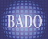 BADO MEETING 2019