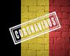 Sciensano peilt naar impact COVID-19 op gezondheid Belgen