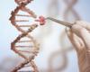 Les conséquences des mutations FOXP1: au-delà de la déficience intellectuelle et des troubles du développement du langage