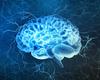 Vieillissement: stimuler les ondes du cerveau pour préserver un type de mémoire (Etude)