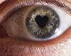 Google développe un algorithme pour détecter les maladies cardio-vasculaires et oculaires