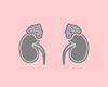 Gebruik van glucocorticoïden bij bijnierschorsinsufficiëntie: nodig, maar voorzichtigheid is geboden