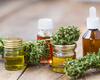 Une grande chaîne de pharmacies canadienne teste la blockchain avec le cannabis