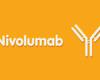 CheckMate 204: de eerste fase II-studie met de combinatie van nivolumab en ipilimumab