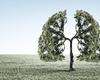 Longkankerscreening met CT-scan zou kans op overlijden met ruim vierde doen dalen