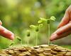 Duurzame beleggingen: eindelijk een label in 2019