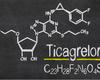 Le ticagrelor, antibiotique du futur?