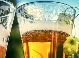 Les nutriments contenus dans la bière pourraient être bénéfiques face aux maladies dégénératives