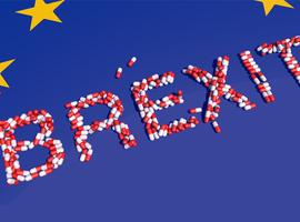 Brexit:les pharmaciens anglais inquiets