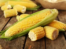 Fructose eten zou de ontwikkeling van colonkanker bevorderen