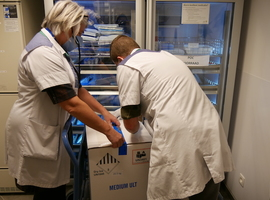 GZA Ziekenhuizen ontvangt en bewaart eerste levering coronavaccins voor provincie Antwerpen