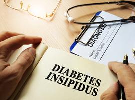 Dosage de la copeptine: une nouvelle référence pour le diagnostic différentiel des diabètes insipides