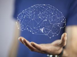 Un nouveau système d'imagerie hybride à l'hôpital Erasme pour l'étude du cerveau