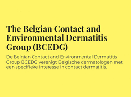 Belgian Contact and Environmental Dermatitis Group, 19/10/2019