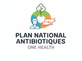 Présentation des avancées du plan national antibiotiques