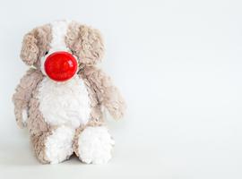 Derde Rode Neuzen Dag focust op mentale welzijn op school
