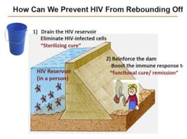 Infection par le VIH: l'épidémiologie change, les possibilités thérapeutiques aussi
