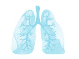 Probiotica en de longen: enkele verontrustende vaststellingen bij chronische ademhalingsaandoeningen
