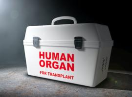 Atteintes cutanées après transplantation: quid de la mortalité?
