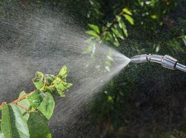 Un insecticide responsable du décès de 13 enfants au Bangladesh en 2012, selon une étude
