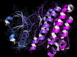 Ceritinib bij gevorderd niet-kleincellig longcarcinoom met ALK-herschikking