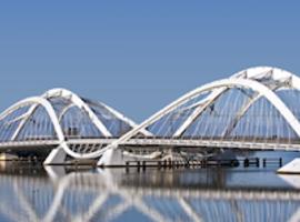 23e congrès de l'EADV «Building Bridges» (Amsterdam, octobre 2014)