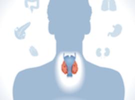 Fonction thyroïdienne et fibrillation auriculaire