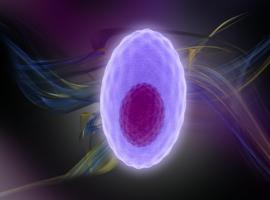 Combinaisons contenant du carfilzomib en première ligne dans le MM