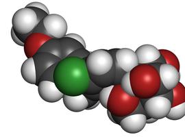 Néphroprotection chez le diabétique: les atouts des inhibiteurs du SGLT2