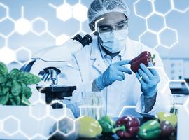 Sécurité alimentaire: les structures de contrôle dans l'UE débordées (Cour des comptes)