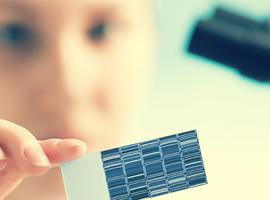 België zet meer in op genoomanalyse van positieve coronatesten