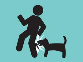 Près de 1.500 enfants sensibilisés au risques de morsures de chien en Wallonie