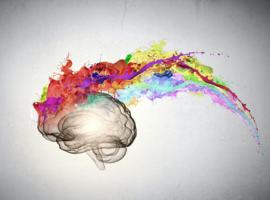 Brain'Art Challenge 2018