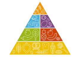Les recommandations nutritionnelles peu adaptées aux pays pauvres (études)