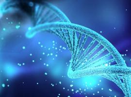 Nouvelles informations inquiétantes sur les bébés chinois génétiquement modifiés