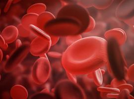 Journée de l'hémophilie: Une thérapie génique due à un adénovirus-associé fait ami
