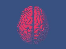 UZ Leuven zet nieuwe software in voor precieze bestraling uitzaaiingen in hersenen