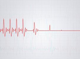 Vincent Lambert: la Société de soins palliatifs déplore les «déclarations catégoriques»