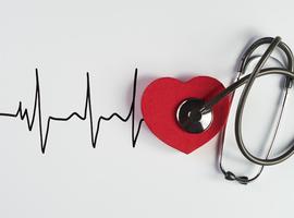 Pour diagnostiquer une FA, un contrôle régulier du rythme cardiaque est primordial