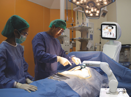 Évaluation technico-juridique dessystèmes de soins chirurgicaux autonomes