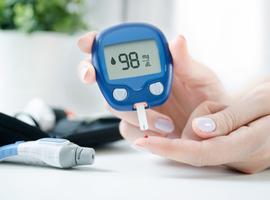 Des chercheurs de l'ULB se penchent sur le développement moléculaire du diabète