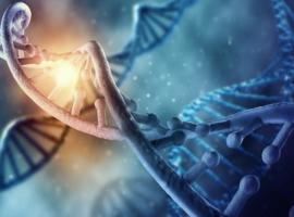 L'UZ Leuven se lance dans les analyses de génome entier