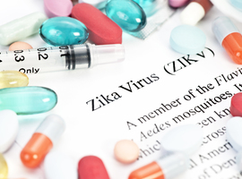 Le Zika, une arme potentielle contre le cancer du cerveau