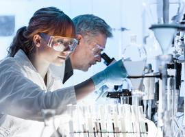 Leuvense onderzoekers vinden methode om botweefsel op industriële schaal te kweken