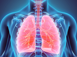 700.000 Belges souffrent d'une maladie pulmonaire permanente, selon la BeRS