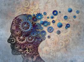 Doit-on s'inquiéter de l'incidence possible de l'hypoglycémie sur la fonction cognitive?