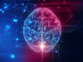 Het elektronische neuron:  werkzaam in een nabije toekomst?