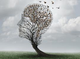 Du déficit cognitif léger à la maladie d'Alzheimer