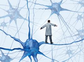 KU Leuven richt Leuven Brain Institute (LBI) op